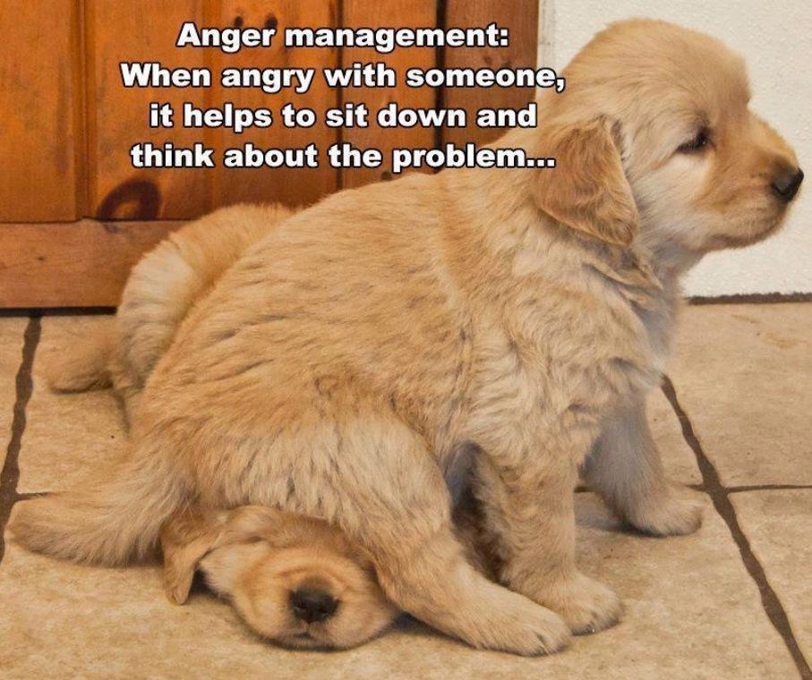 Anger management är viktigt att lära sig.