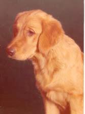 Donna, född 1982