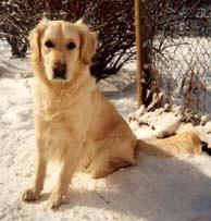 Lisa, född 1992