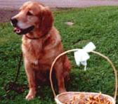 Jorun, född 1997