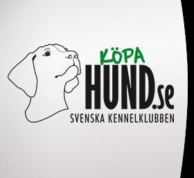 kopahund_logo